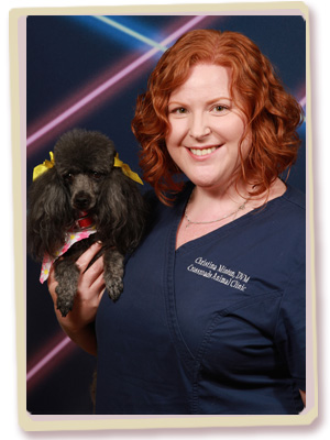 Arlington Veterinarian